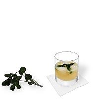 Whisky Sour en un vaso tumbler con decoración de menta.